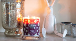 Have a very Cosy Christmas with our Christmas Wax Melts