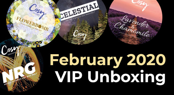 February 2020 VIP Subscription Unboxing