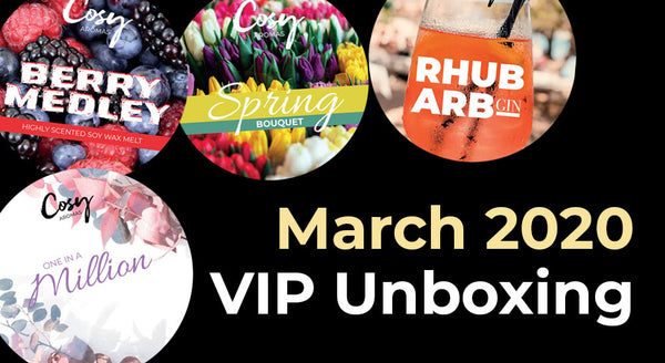 March 2020 VIP Subscription Unboxing