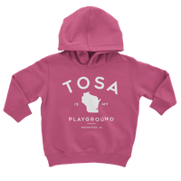 The Tosa Standard Pink Youth Hoodie