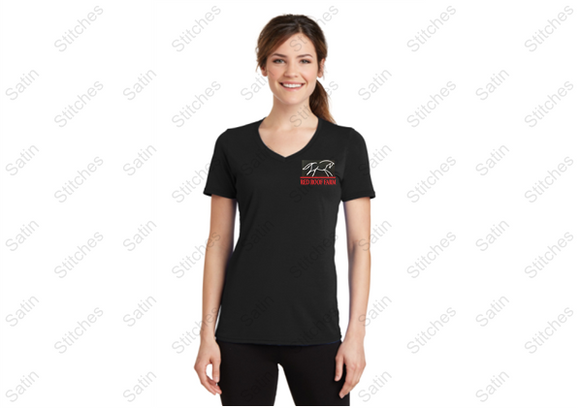 Red Roof Ladies V-neck T-shirt