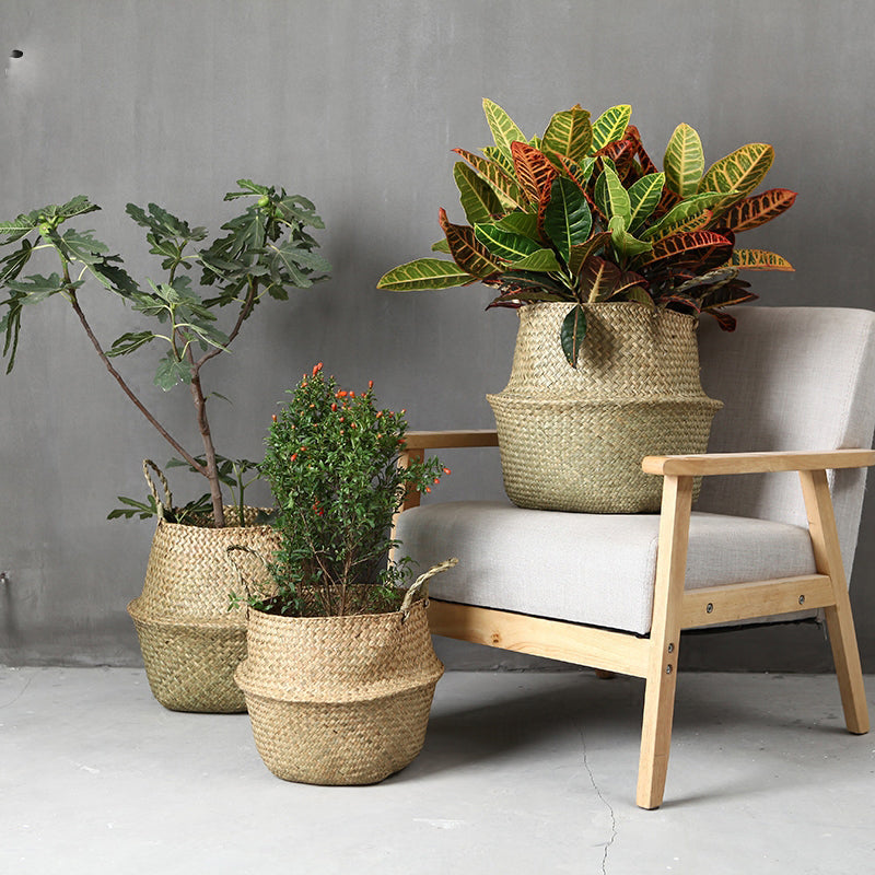 Seagrass Woven Basket Natural - Modern Urban Jungle