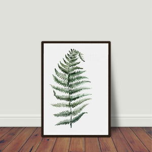Watercolour Fern Plant Art