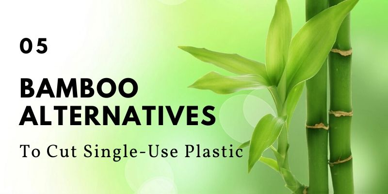 5 Bamboo Alternatives To Cut Single-Use Plastic