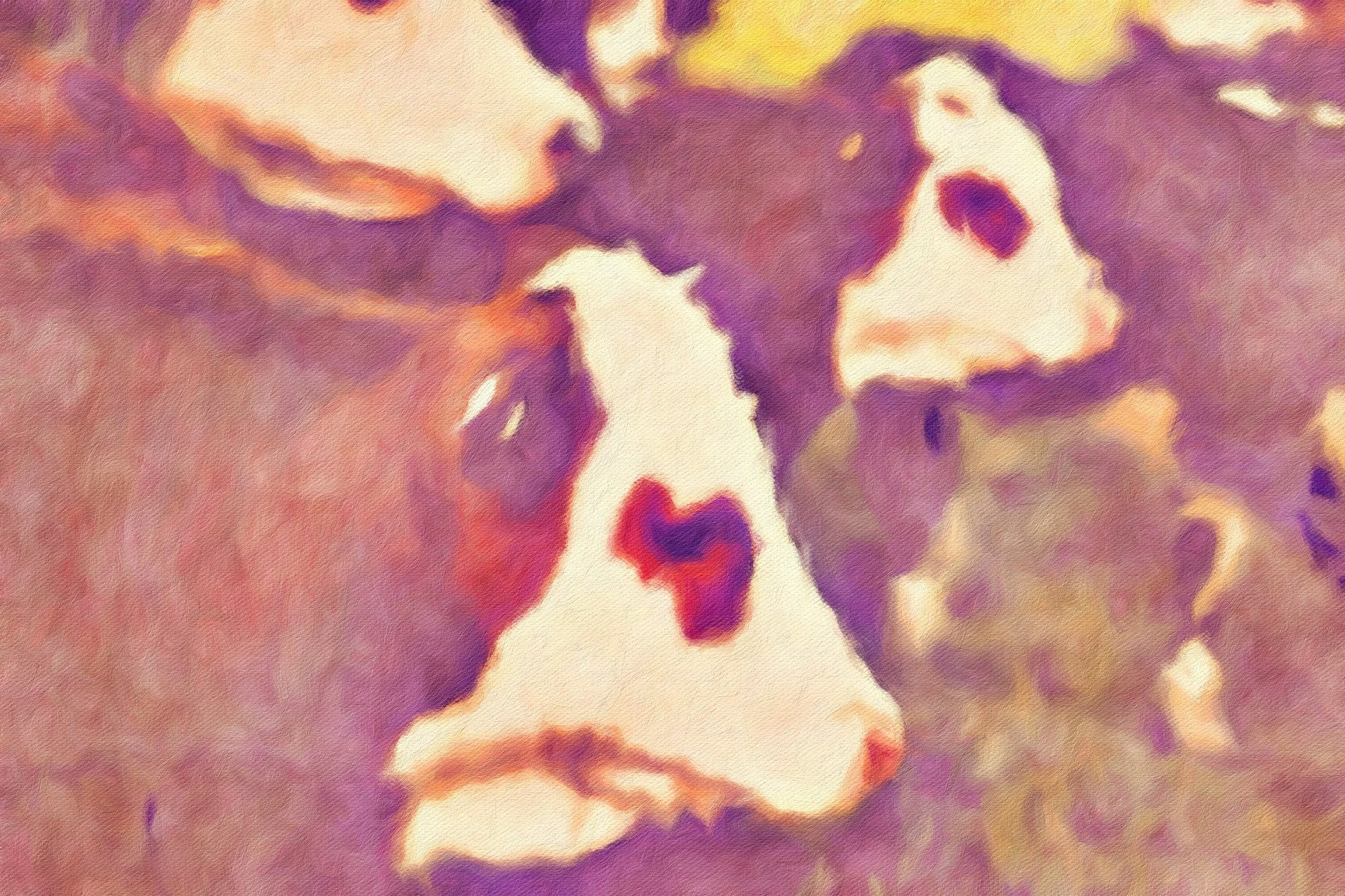 Cows No. 7, Reworked