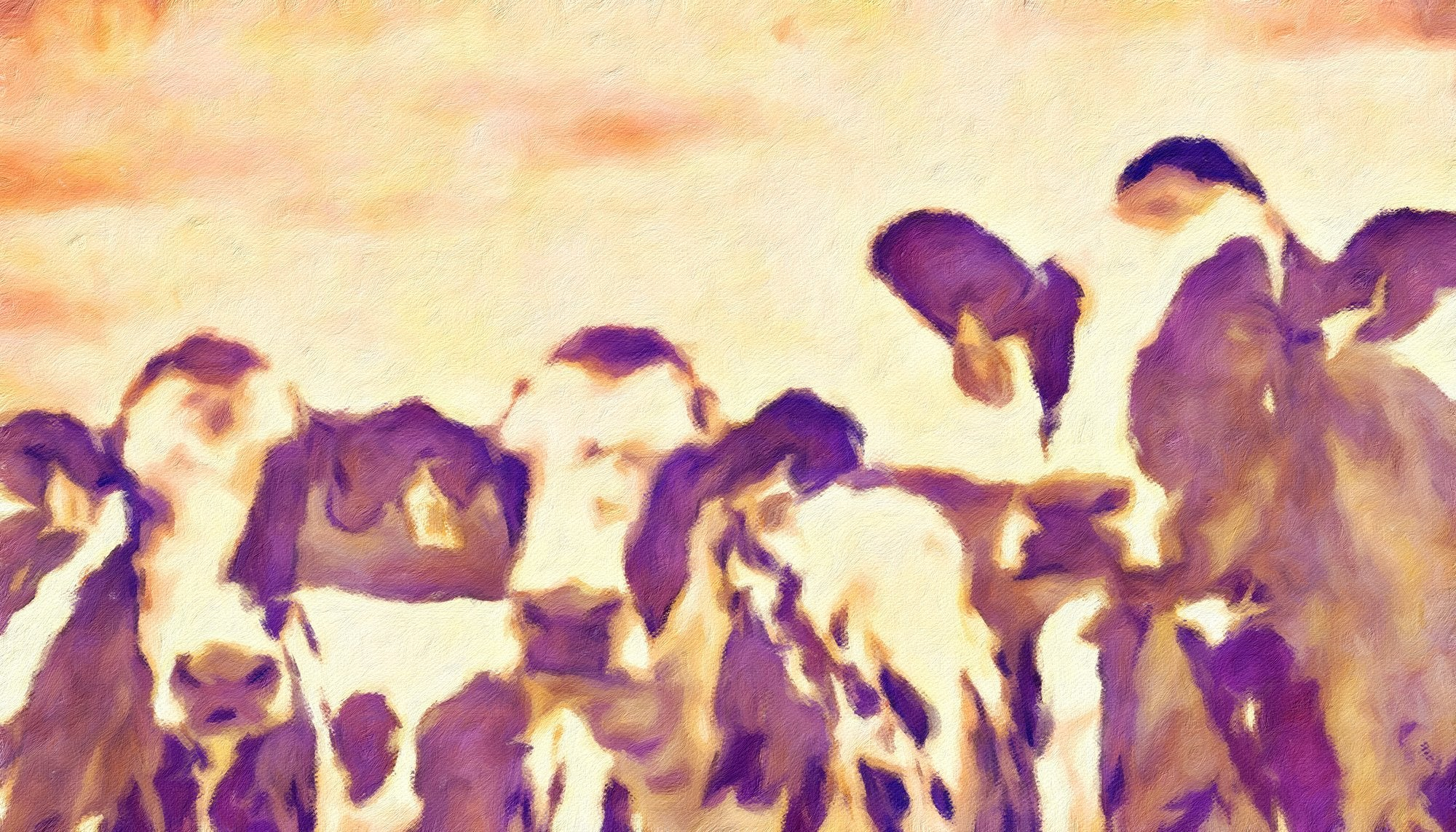 Cows No. 13, Reworked