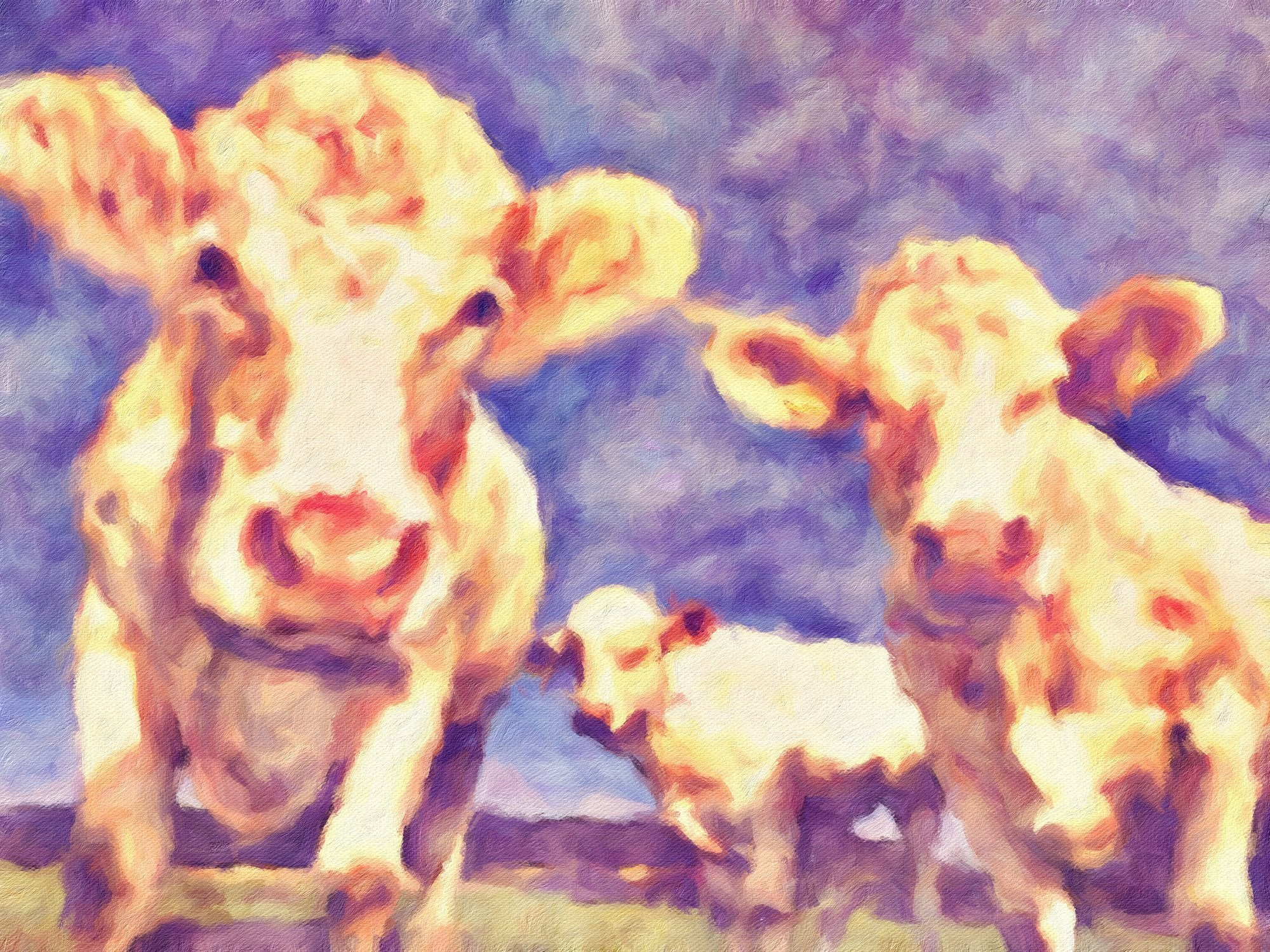 Cows No. 21, Reworked