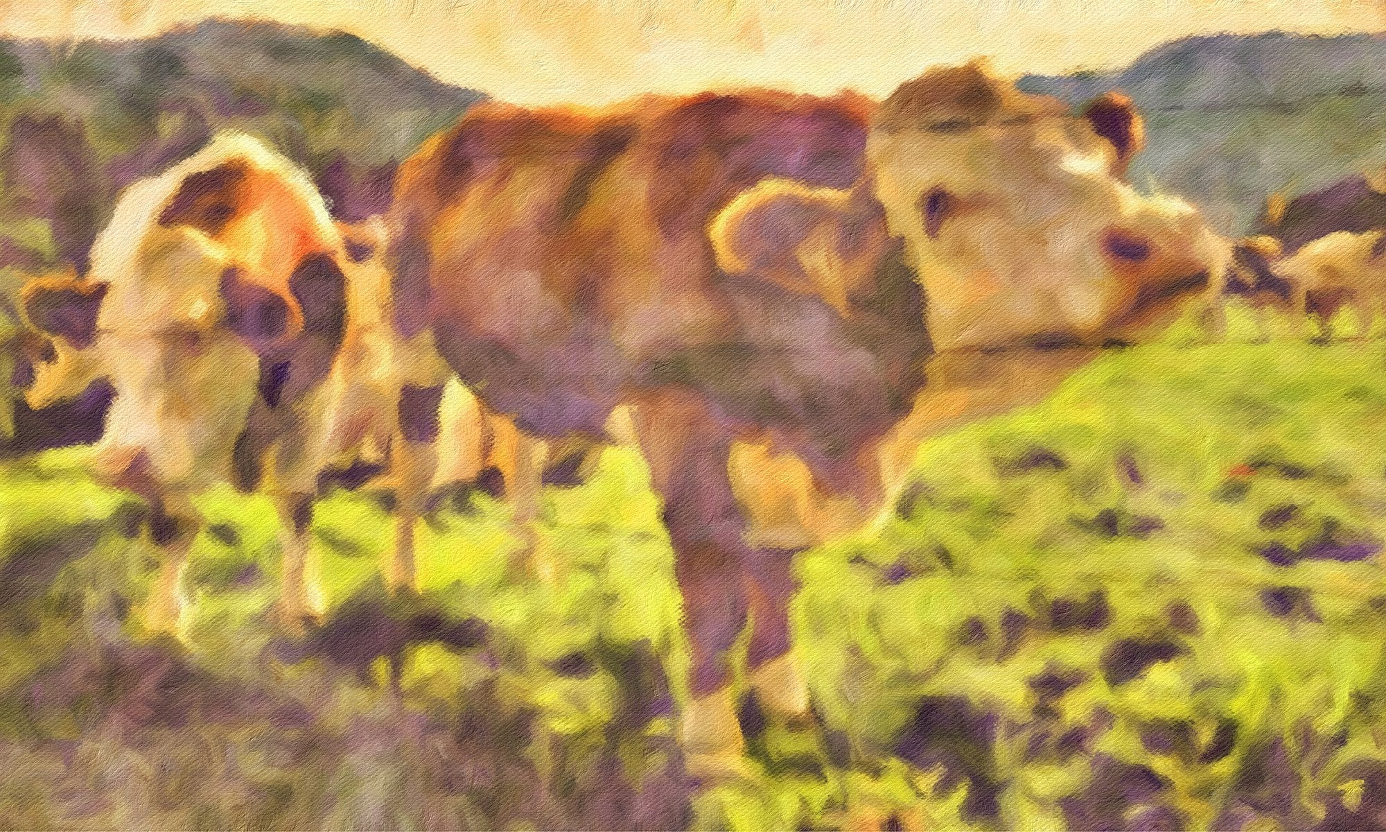 Cows No. 22, Reworked