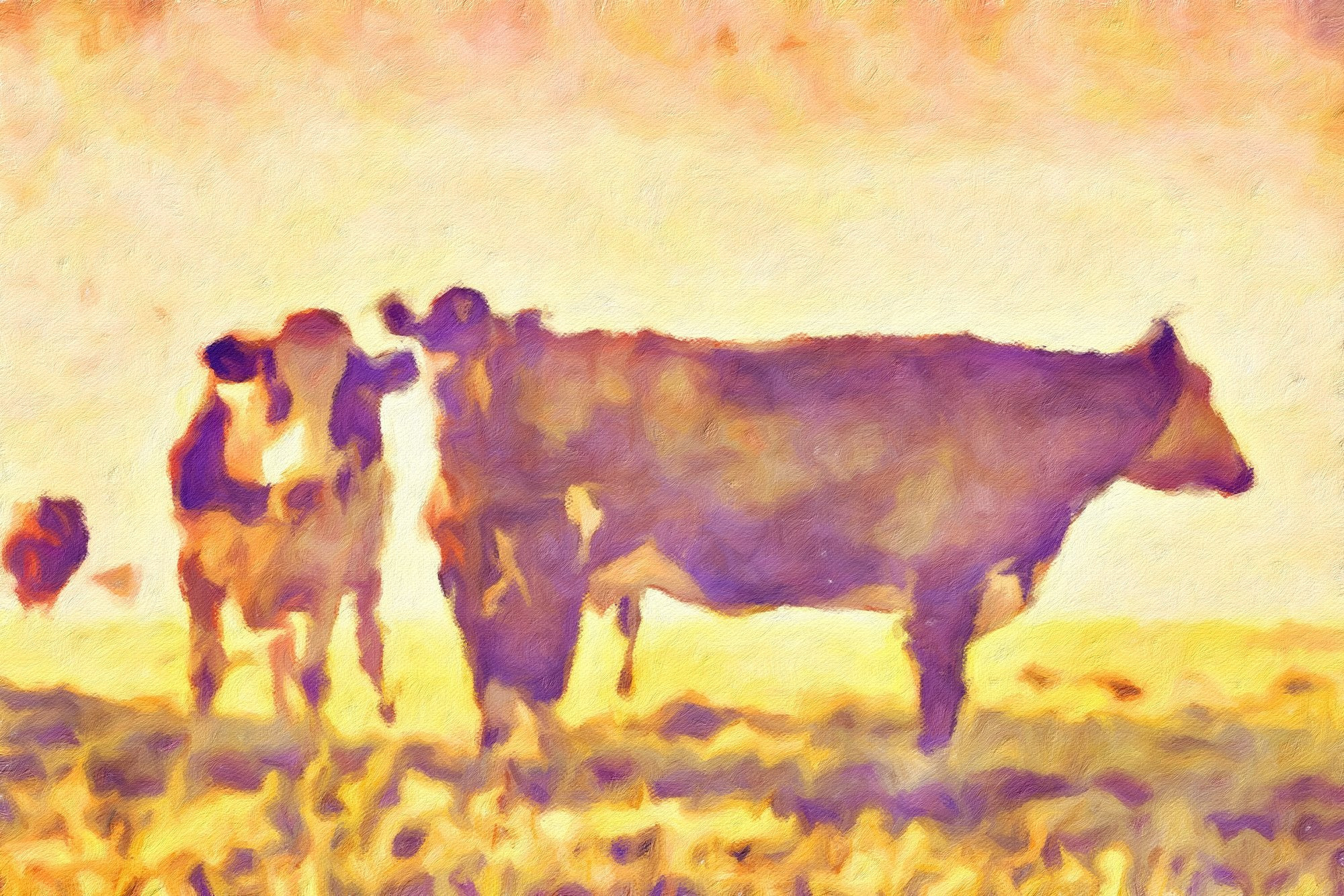 Cows No. 24, Reworked