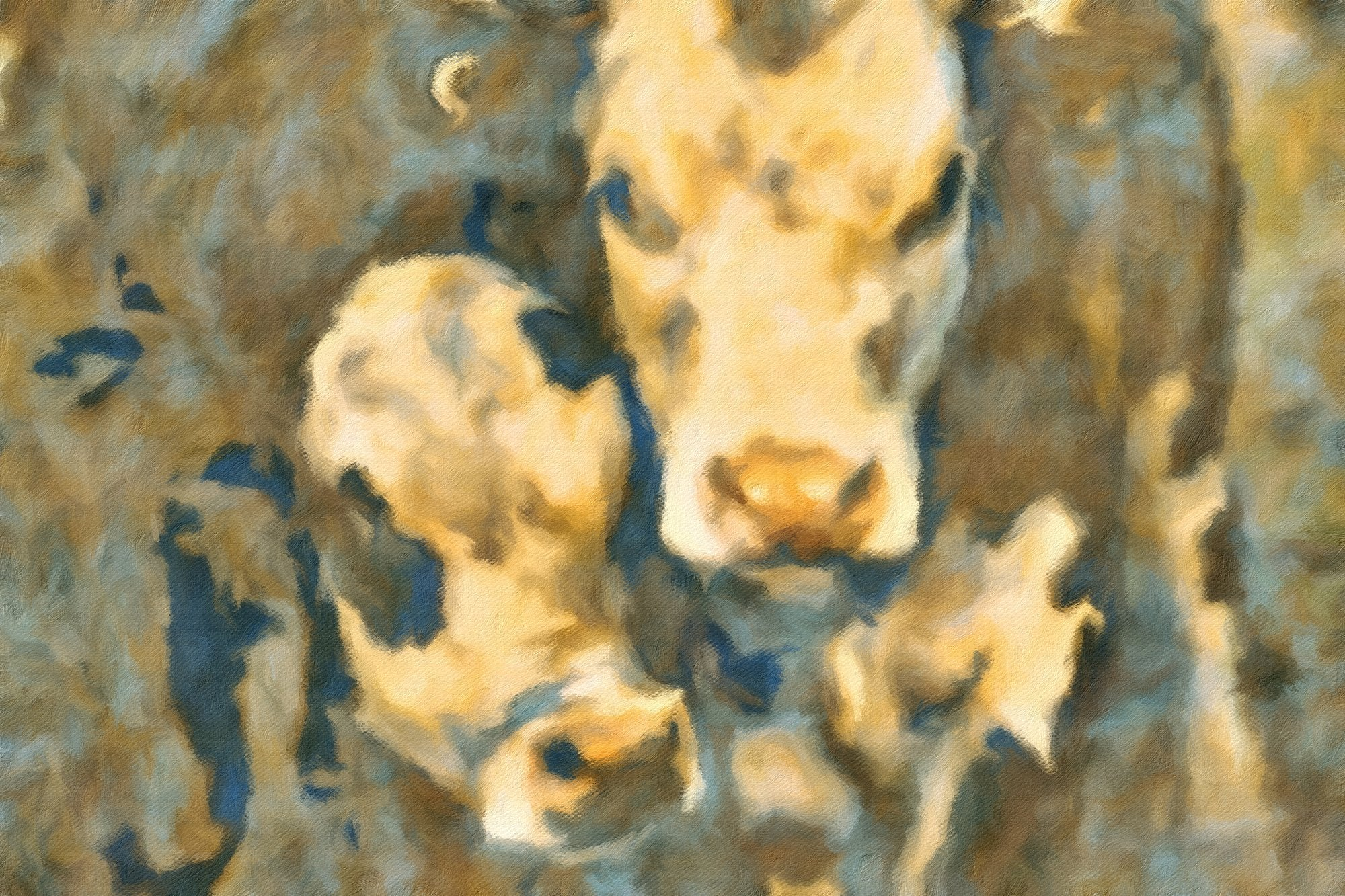 Cows No. 27, Reworked