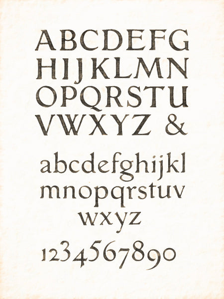 Alphabets Old and New, Illustration 128, French Printed Type Designed By Grasset, Reworked, Series 1