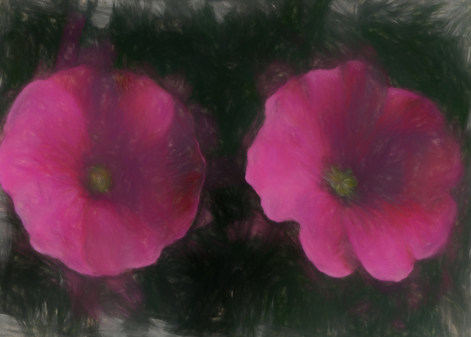 Lavatera, Reworked, Series 2