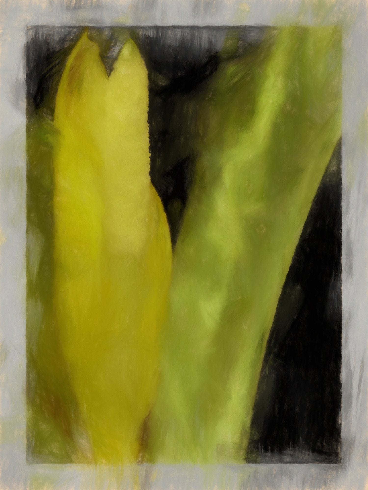 Lysichiton Camtschatcense (Western Skunk Cabbage), Reworked, Series 2