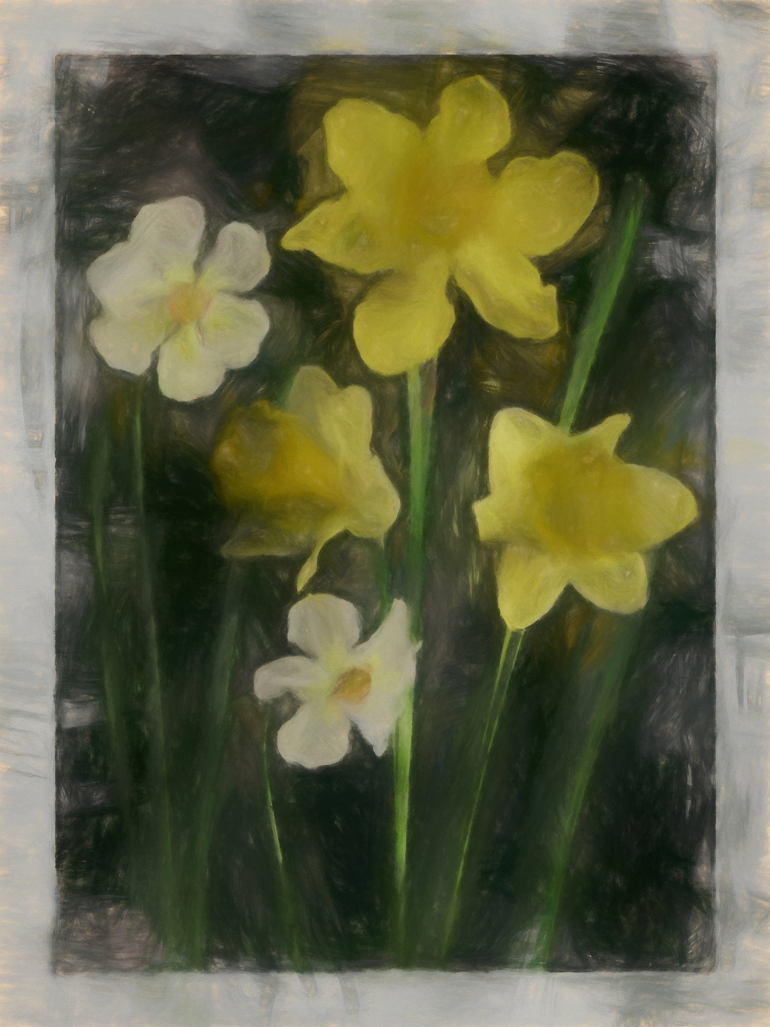 Narcissi of Several Kinds, Reworked, Series 2