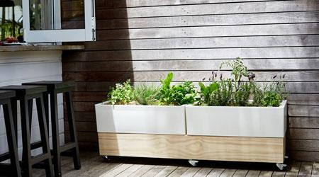 Spring Vegetable Planters
