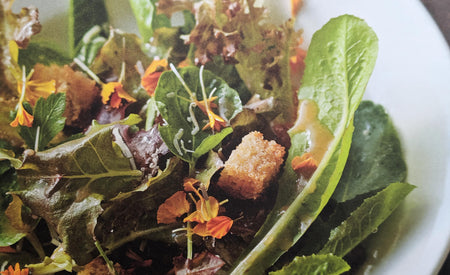 Recipe 6: Mignonette and red oak lettuce with gruyere, Dijon vinaigrette and garlic croutons