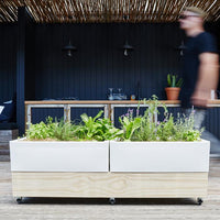 Mobile Self-Watering Raised Cafe Planter