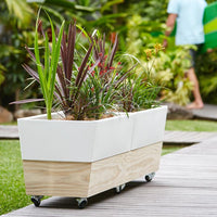 Raised Self Watering Vegetable Planter On Wheels