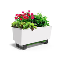 Mini Bench Modern White Planter Box