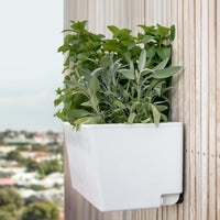 Self watering hanging garden planter