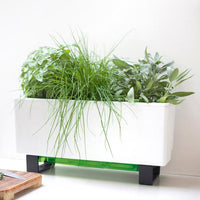 Glowpear Modern Mini Bench Planter