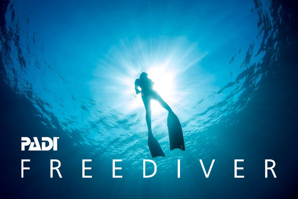 Freedive Courses