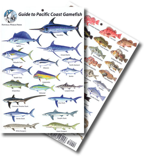 Pacific Coast Gamefish Identification Card