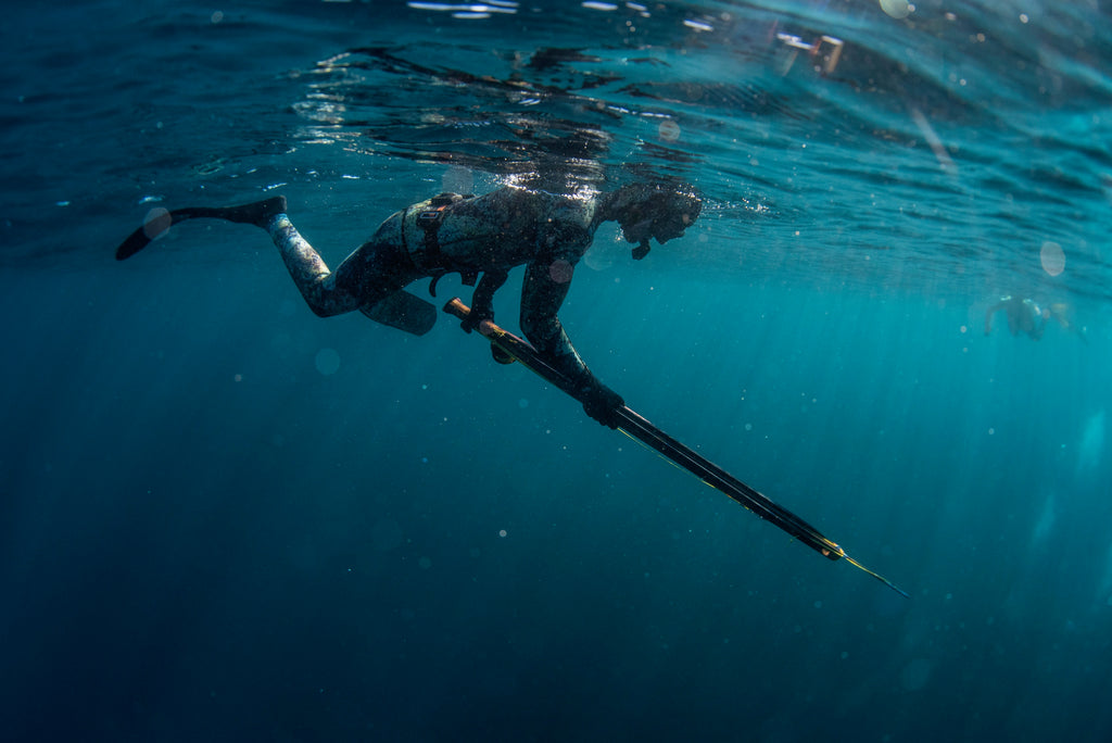 Spearfishing Trip - Catalina Island