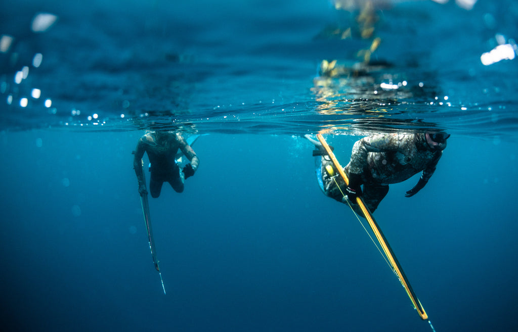 Spearfishing Guide
