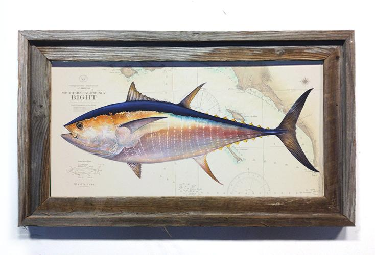 Abachar Studio Bluefin Over Chart