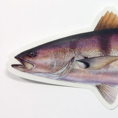 Studio Abachar Whitesea Bass Sticker