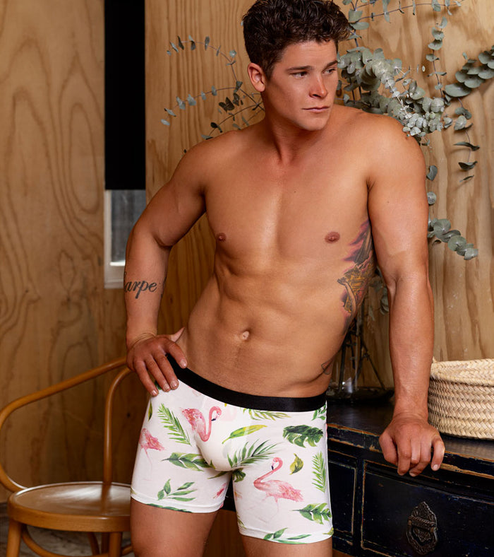 Boxer Briefs 3-Pack - Tropical, 420, Flamingo