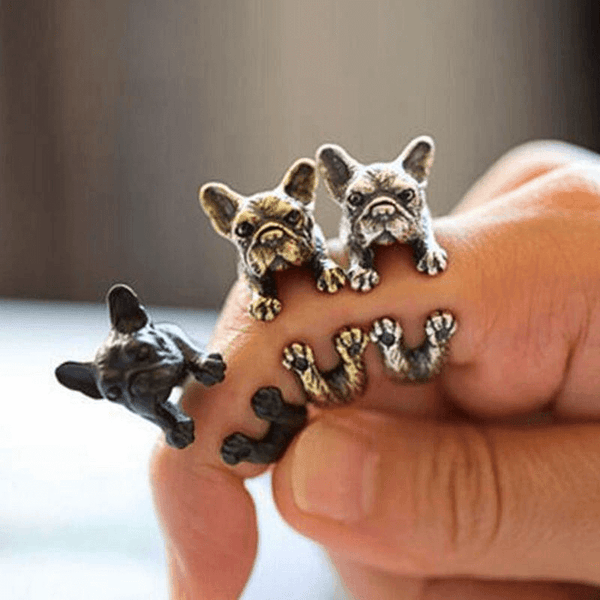 Dog Ring With Different Colors - AnimalsLuxury