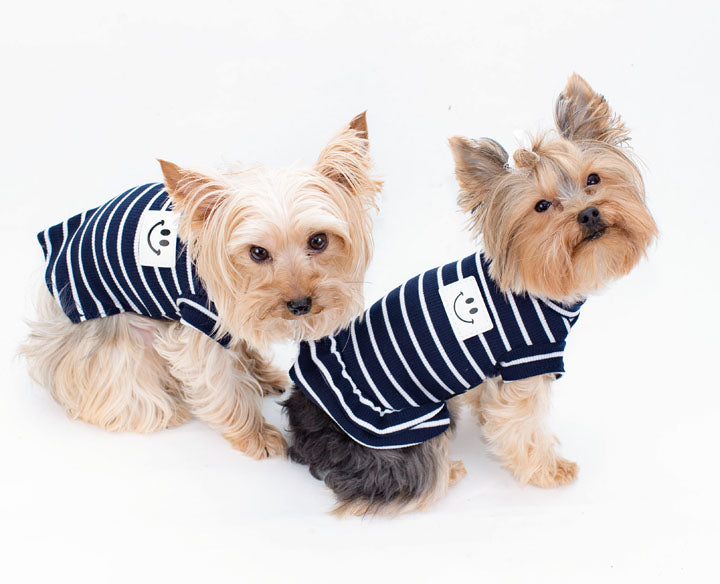 navy-white pet resort wear