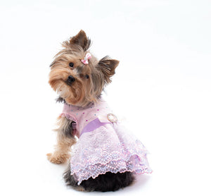 Pink- Purple Lace Pet Dress