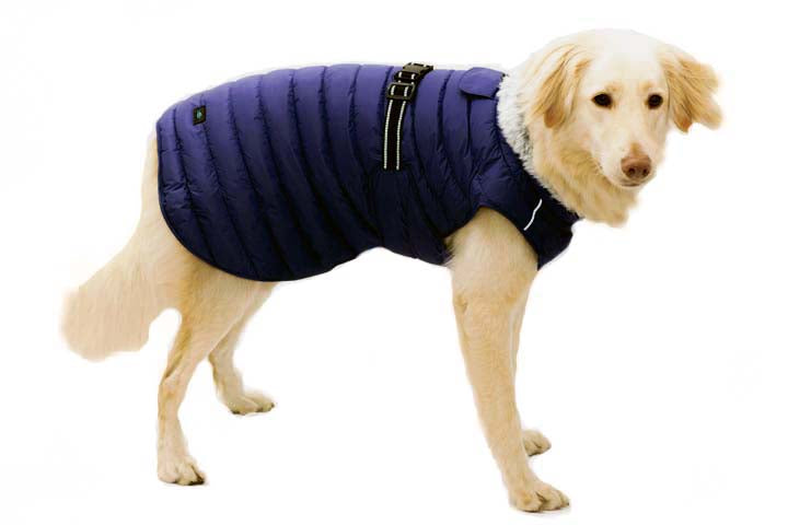Extreme Cold Blue Puffer Pet Coat