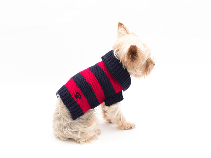 Red and Blue Rugby Pet Sweater