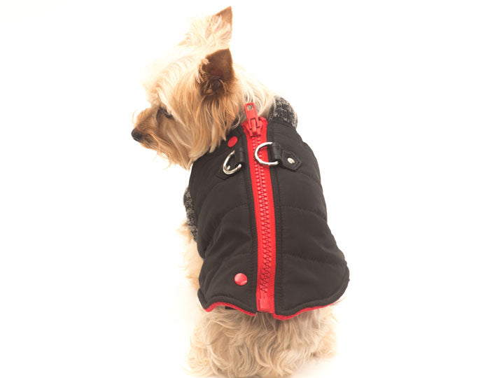 Runner Dog Coat byDogo-Black