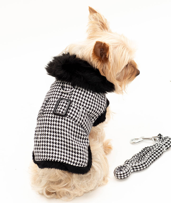 Classic Black and White Harness Coat with Leash
