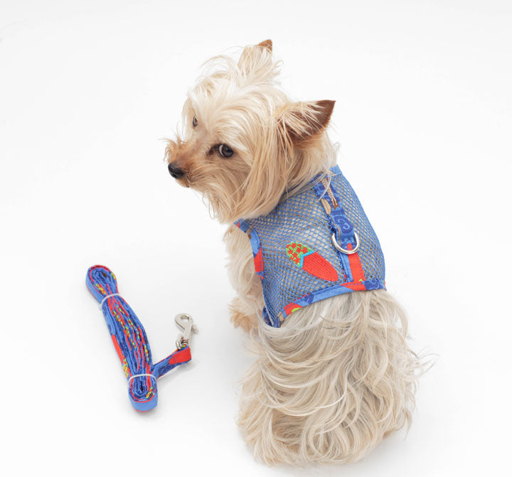 Blue Pet Mesh Harness