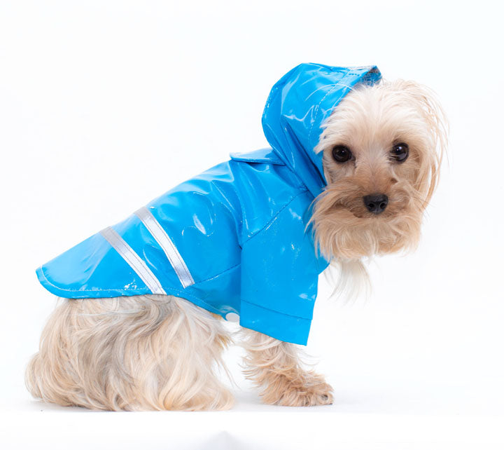 Blue Pet Rain Coat