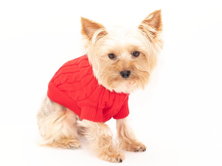 Cable Knie Red Pet Sweater