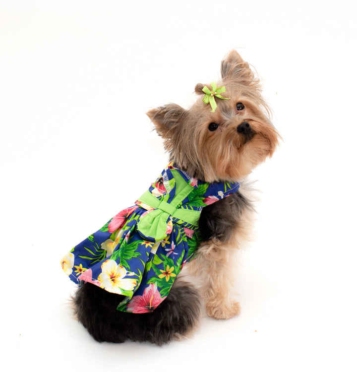 Blue Lagoon Hawaiian Dress- Harness