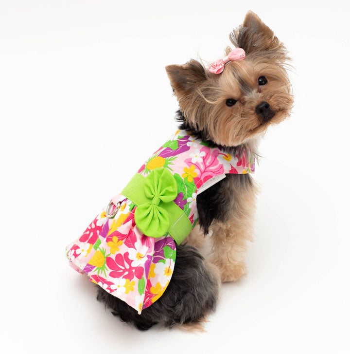 Floral Pet Harness dress with Leash