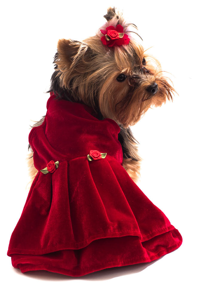 Red Velvet Holiday Dress for Pets