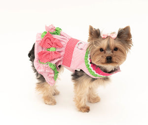 Pet Dress - Harness