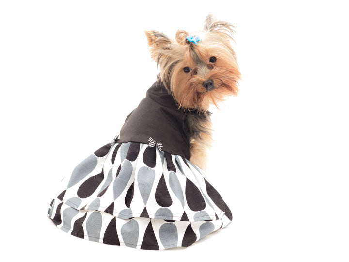 Warm Pet Dress for any occasion