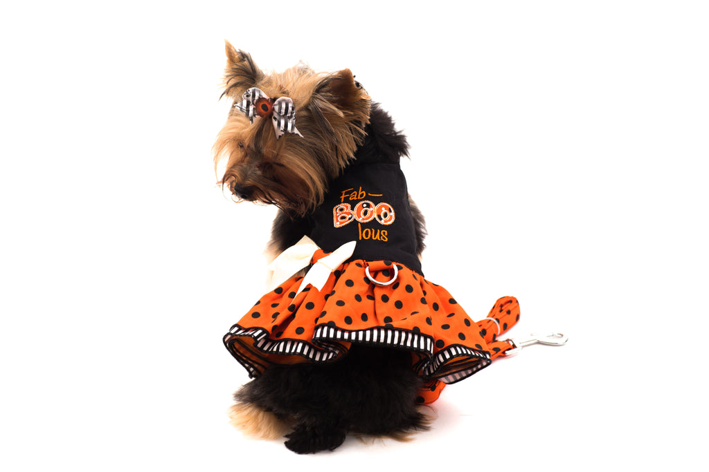 Fab-Boo-Lous- Halloween-Pet Dress and Harness
