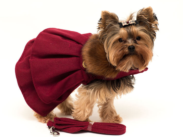 Burgundy wool Dress with faux Collar with leash