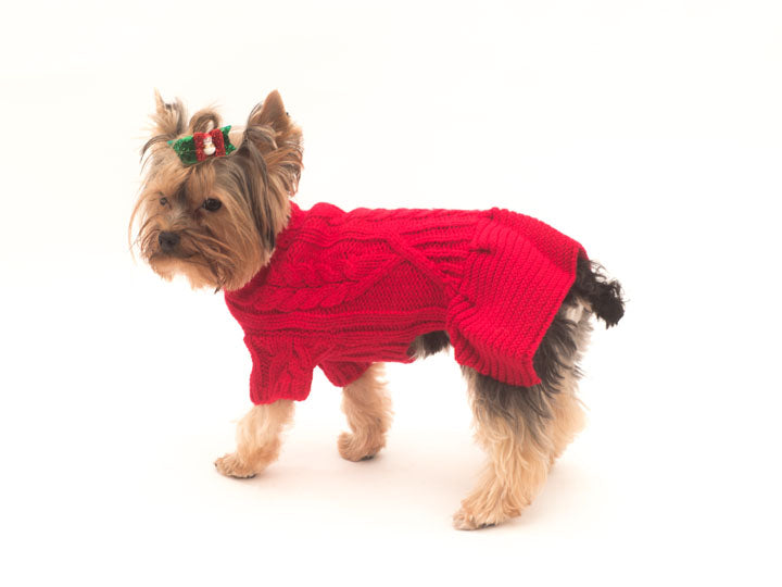 Georgia Dog Sweater Dress-Red